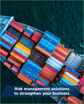 Risk management solutions to strengthen your business